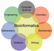 Bioinformatics Training Courses