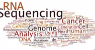 Microbial Genomics Consulting