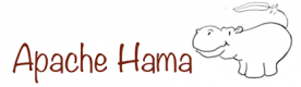 Apache Hama Training Courses